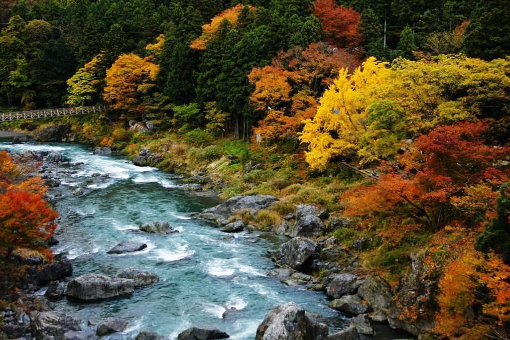 紅葉スポット1_御岳渓谷