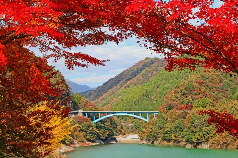 紅葉スポット26_丹沢湖