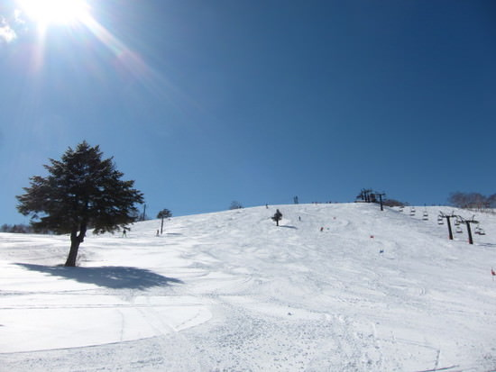 powder-snow_spot5