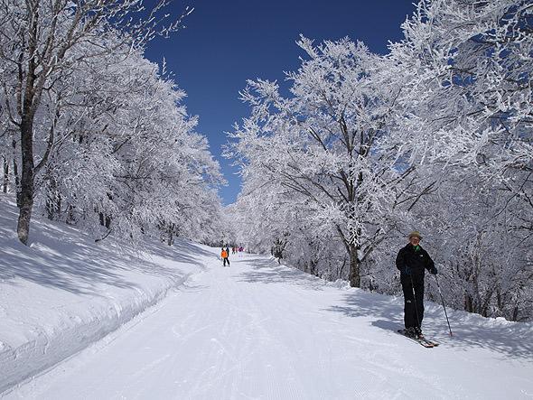 powder-snow_spot6