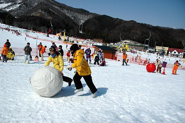 ゲレンデ_かたしな高原スキー場