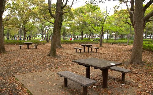 park-12
