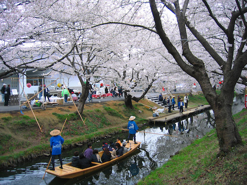 Kawagoe_Boating_In_Shingashi_River_1