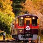 紅葉スポット21_わたらせ渓谷鉄道